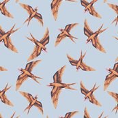 Swallow in Copper on Grey