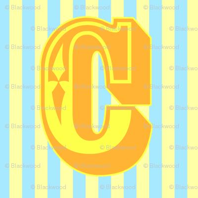 Bright Bunting C