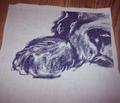Rnewf_puppy_fat_quarter2_comment_115616_thumb