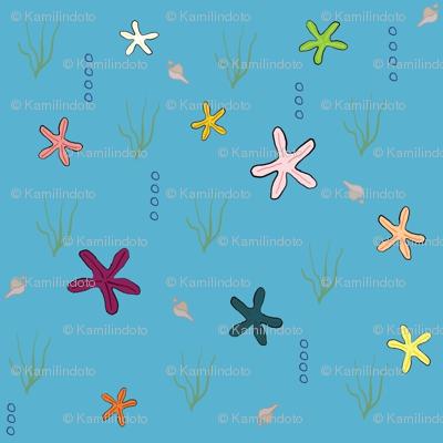 Ditzy Starfish