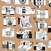 camerasspoon