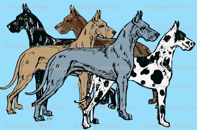 Great Dane Colors