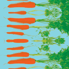 Cabbage and carrot-turquoise