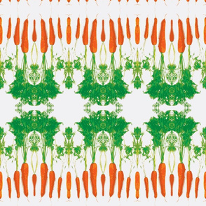 Cabbage and carrot-white small