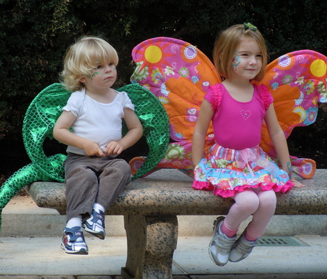 Butterfly Costume Wings assortment