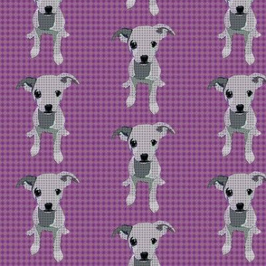 Durga The Chihuahua (Purple)