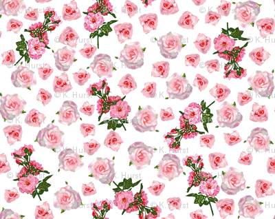 Roses, roses, everywhere