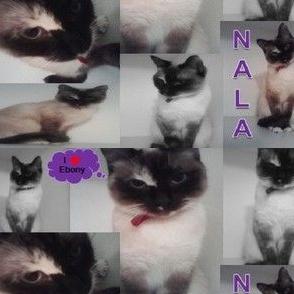 NalaBella