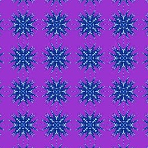 Nautilus Star 8