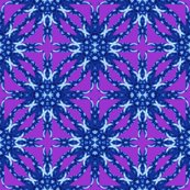 Rresized_nautilus_star_with_purple_5_shop_thumb
