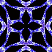 Rrrresized_wisteria_star_2_shop_thumb