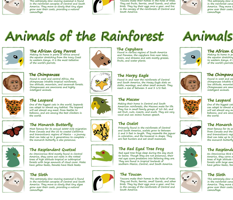 Animals of the Rainforest Panel fabric by brandymiller on Spoonflower - custom fabric