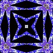 Rrrresized_wisteria_star_7_shop_thumb