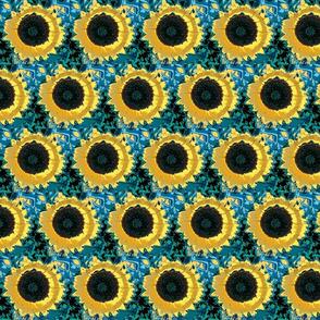 sunflower-ch