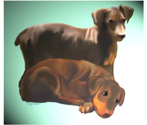 Rrdoberman_puppies_fat_quarter_shop_preview