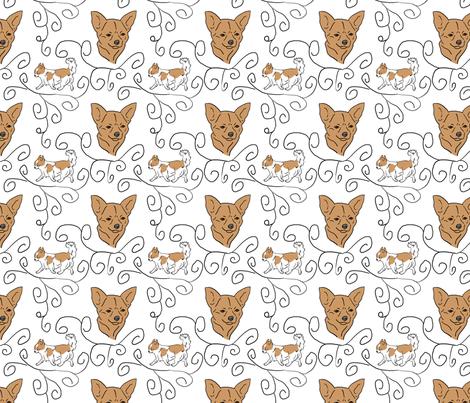 Chihuahua elegance - tan