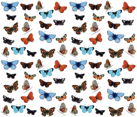 butterflies fabric by victoriagolden on Spoonflower - custom fabric