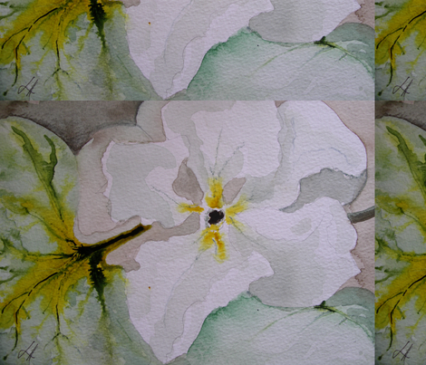 Cucurbit Series: Lagenaria Flower fabric by laurawire on Spoonflower - custom fabric