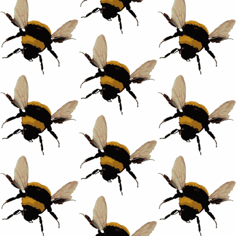 bee's on white fabric by paragonstudios on Spoonflower - custom fabric