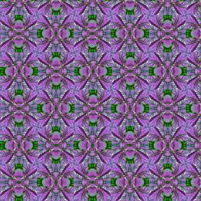 purpleplant4