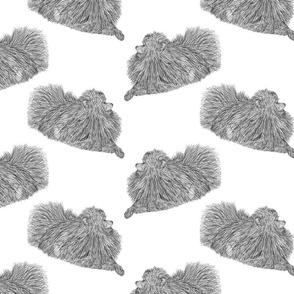 Pomeranian sketch - black/white