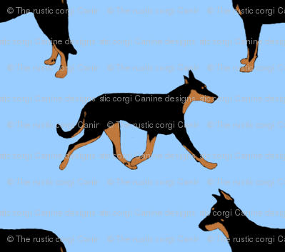 Basic Beaucerons - blue