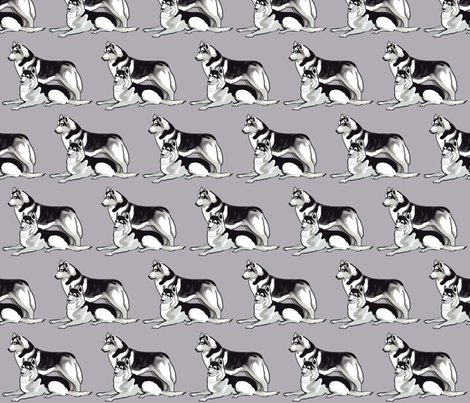 Rrrrsiberian_huskies3_shop_preview
