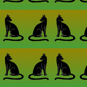 black cat border on green