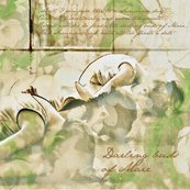Rrspoonflower_darling_buds_of_maie_shop_thumb