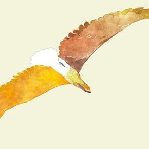 Eagles 6, L
