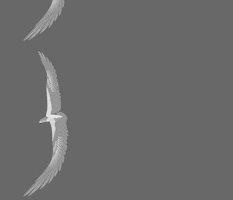 Rr017_eagle_8__border_l_shop_preview
