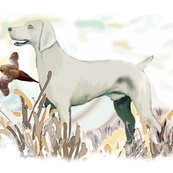 Rrweimaraner_and_pheasant_shop_thumb