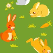 Rrrabbit-groen_shop_thumb