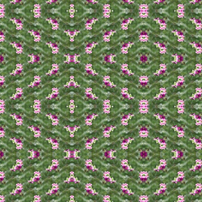 october_s_last_flower