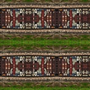 IMGP3048