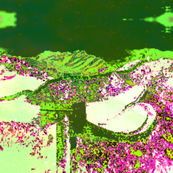 chinesewall (green and pink)