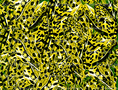 Fabulous Frog Fabric