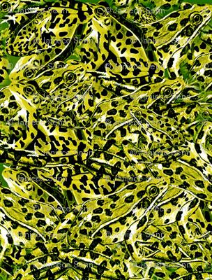 Fabulous Frog Fabric