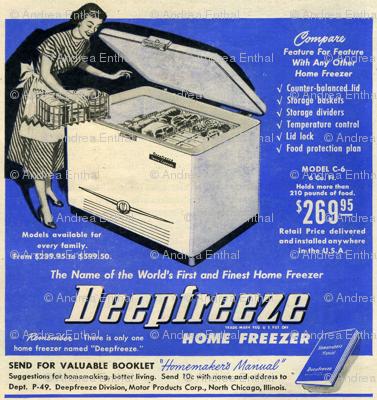 Joy of Housework, part 1, the freezer