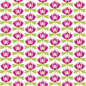 lillipink