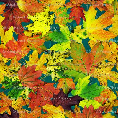 maple_leaves_on_blue