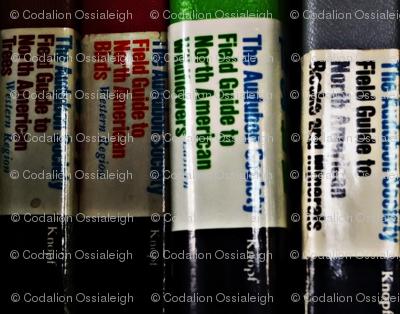 audubon refrence books
