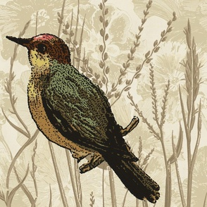 grass_tonal_bird