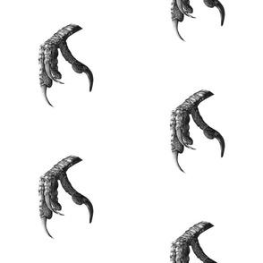 Crow_Claw_2_scar_f2