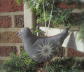 Rrrmatilda_bird.ai_comment_114228_thumb