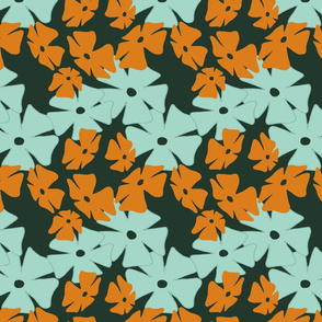 Thumbergina, Orange