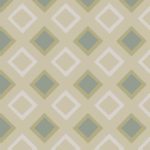 Napkin Squares