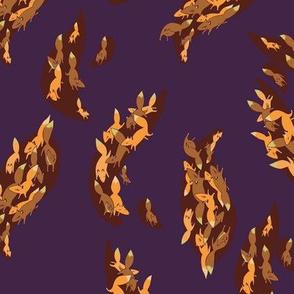 Fox Fleet