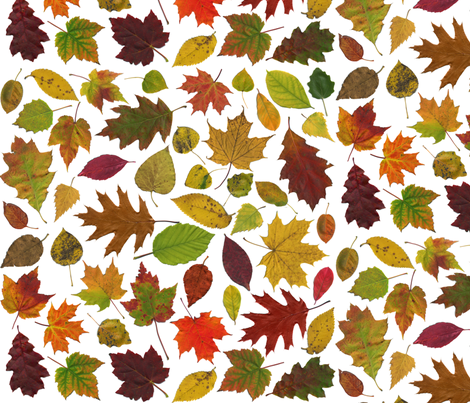 life-sized autumn leaves on white fabric by weavingmajor on Spoonflower - custom fabric