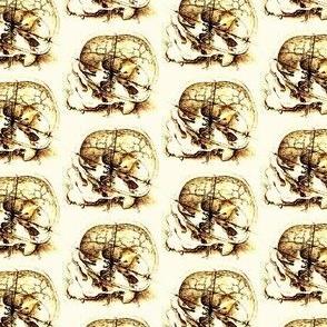 da_vinci_skull_sketch